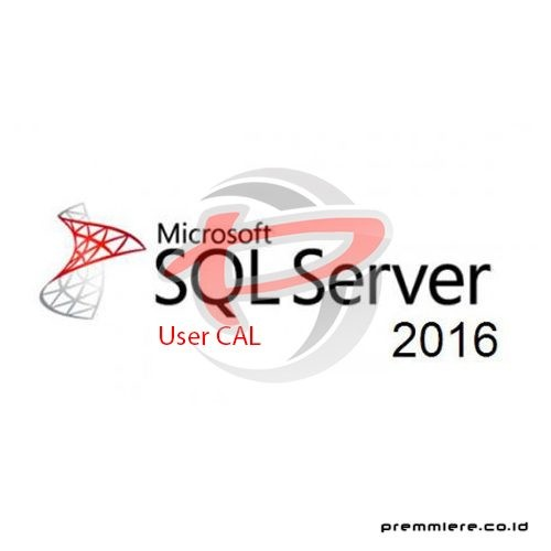 SQL Server Standard 2016 User CAL - Gov [359-06354]